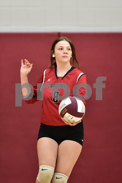 Benton Harmony Grove vs Perryville in a volleyball game.