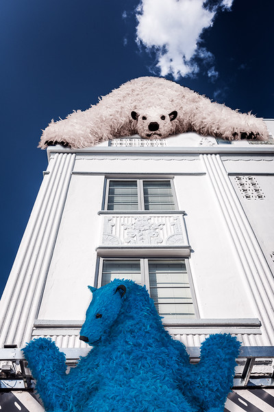 Bearly Hanging On - PSA Score 7