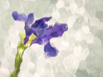 Purple Dreams- PSA Score 6