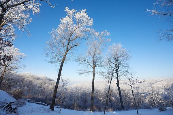 2021 UWL Rime Frost Snow Campus Bluffs 0111
