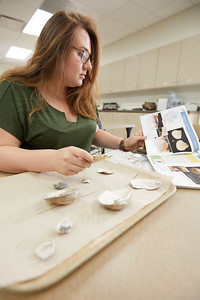 2018 UWL Ashley Nowak Archaeology Mussels 0023