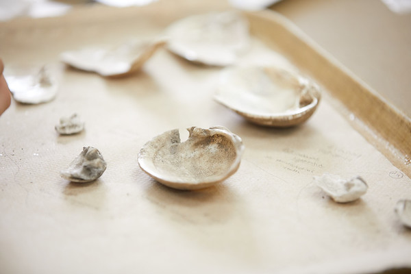2018 UWL Ashley Nowak Archaeology Mussels 0025