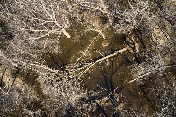 2019 UWL Drone Floodplain Forest Goose Island Park 0009