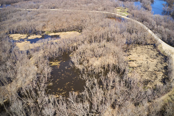 2019 UWL Drone Floodplain Forest Goose Island Park 0006