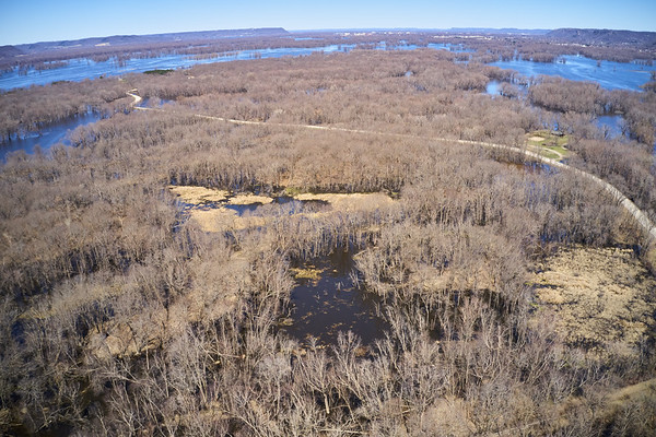2019 UWL Drone Floodplain Forest Goose Island Park 0003