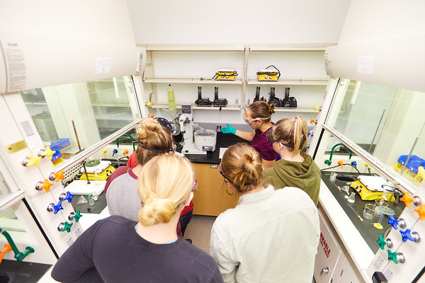 2019 UWL Valeria Stepanova Chemistry Biochemistry Lab 0022
