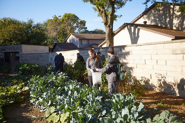 2020 UWL Victory Garden Harvest at Aptiv 0008
