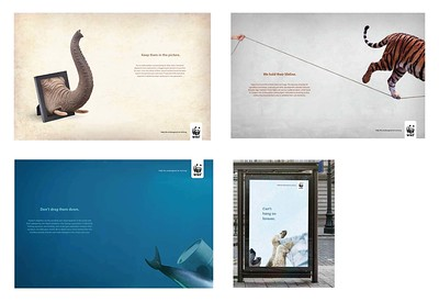"Teada Ngin (faculty: Angela Dow) - ""World Wildlife Fund"" (Consumer Campaign)"