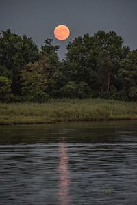 2020 Buck Moon Reflecting