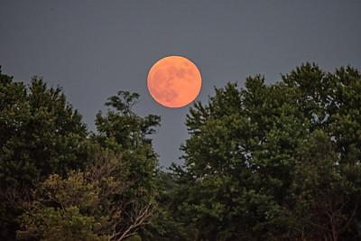 2020 Buck Moon