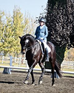 CNDC 20 Don Romeo 798