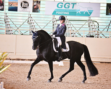 GSD 20 Ebano BRH 7003