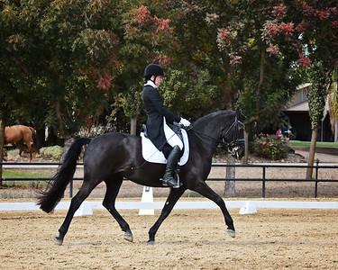 SVE 20 Ellexus Knight 2051