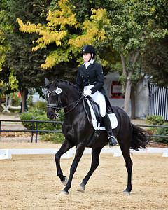 SVE 20 Ellexus Knight 2084