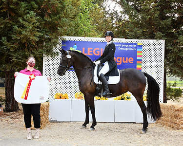 LEGIS 20 Ellexus Knight 7395