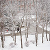 Winter campus scenic of students walking throught quad at SUNY Buffalo State College.