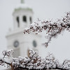 Snow covered crab apples with Rockwell tower at SUNY Buffalo State College.