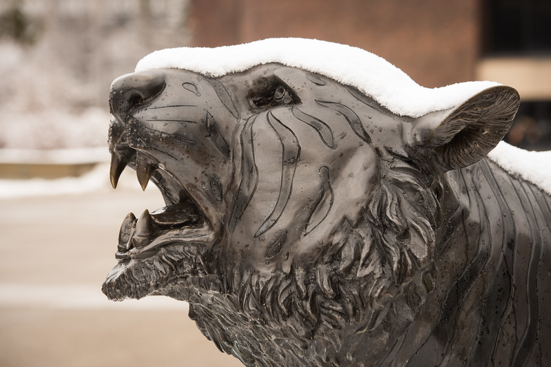Snow covered Bengal Sculpture at SUNY Buffalo State College.