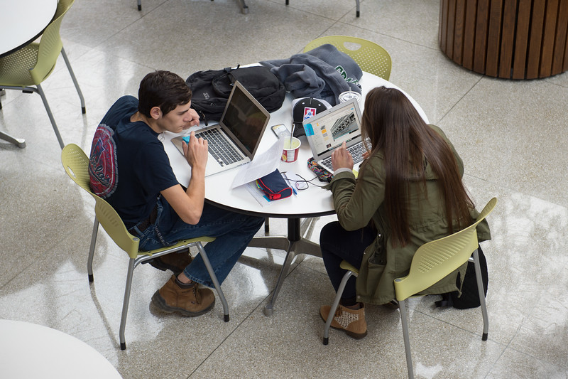 Students studying in Butler Library at Buffalo State College.
