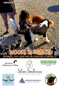 Absolutely Fabulous Photo Booth - (203) 912-5230 - Absolutely Fabulous Photo Booth - Woofs N Treats 113102.jpg