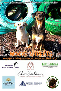 Absolutely Fabulous Photo Booth - (203) 912-5230 - Absolutely Fabulous Photo Booth - Woofs N Treats 104619.jpg