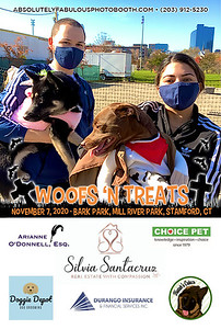 Absolutely Fabulous Photo Booth - (203) 912-5230 - Absolutely Fabulous Photo Booth - Woofs N Treats 111641.jpg