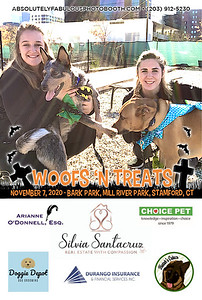 Absolutely Fabulous Photo Booth - (203) 912-5230 - Absolutely Fabulous Photo Booth - Woofs N Treats 105516.jpg