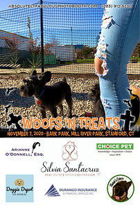 Absolutely Fabulous Photo Booth - (203) 912-5230 - Absolutely Fabulous Photo Booth - Woofs N Treats 113445.jpg
