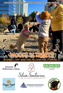 Absolutely Fabulous Photo Booth - (203) 912-5230 - Absolutely Fabulous Photo Booth - Woofs N Treats 110718.jpg