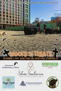 Absolutely Fabulous Photo Booth - (203) 912-5230 - Absolutely Fabulous Photo Booth - Woofs N Treats 114857.mp4