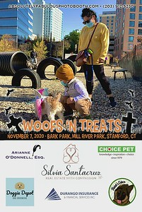 Absolutely Fabulous Photo Booth - (203) 912-5230 - Absolutely Fabulous Photo Booth - Woofs N Treats 110752.mp4