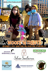 Absolutely Fabulous Photo Booth - (203) 912-5230 - Absolutely Fabulous Photo Booth - Woofs N Treats 105624.jpg