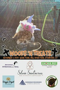 Absolutely Fabulous Photo Booth - (203) 912-5230 - Absolutely Fabulous Photo Booth - Woofs N Treats 110645.mp4