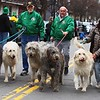 200314 Youngstown St. Patrick's Day Parade 10