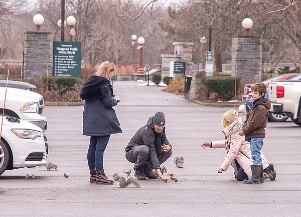 201221 Enterprise 1<br /> James Neiss/staff photographer <br /> Niagara Falls - Illinois tourists Jennifer Lee, Allen Skaggs, Izzy Brown, 10 and brother Ashton Brown, 9, were surprised at the friendly wildlife that greeted them in the parking lot at Niagara Falls State Park.