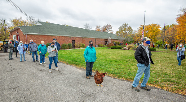 """201026 Early Voting 1<br /> James Neiss/staff photographer <br /> Lockport, NY - A pair of patriotic chickens joined the long line of early voters in front of Bonita Reid of Wrights Corners at the Niagara County Fairgrounds on Monday. Luckily for them, the campaign promise """"A Chicken In Every Pot"""" attributed to Herbert Hoover's campaign in 1928, certainly must now be politically incorrect in these modern times."""