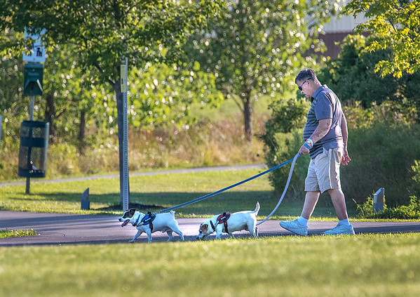 200805 Enterprise 4<br /> James Neiss/staff photographer <br /> Lockport, NY - It was the perfect evening to walk the dogs at Day Road Park on Wednesday.