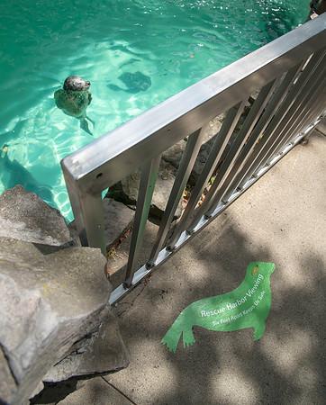 200630 Aquarium