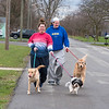 200404 Enterprise 1<br /> James Neiss/staff photographer <br /> Lockport, NY - It ended up being a nice day on Saturday for Lillie, Nola and Emmet the dogs to take their owners Alicia and Allison Depp for a walk on Willow Street in Lockport.