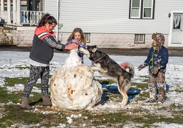 201202 Enterprise<br /> James Neiss/staff photographer <br /> North Tonawanda, NY - Miska the dog jumped in to help build a snowman with, from left, Alessandra Modica, her neighbor Sydney Stofle, 11 and her son Luke Modica in front of their Ward Road home.