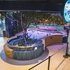 201008 Aquarium 2