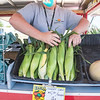 200813 Enterprise 2<br /> James Neiss/staff photographer <br /> Niagara Falls, NY - Jen Regan coordinator of the Veggie Van stocks fresh sweet corn during a stopl at Kalfas Elementary. The Veggie Van, sponsored by the Niagara County Cornell Cooperative Extension, spent the morning in front of the school for locals to take advantage of the fresh vegetables. The Veggie Van Mobile Farmers Market makes three stops in Niagara Falls every Thursday from 10-11 a.m. at St. John de LaSalle, 11:30- 12:30 p.m. at Kalfas Elementary and 1:30-2:30 at Carolyn's House.