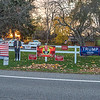 201103 Election Day 5<br /> James Neiss/staff photographer <br /> Wilson, NY - A Wilson resident went all out with election signage in front of his Wilson Cambria Road home.