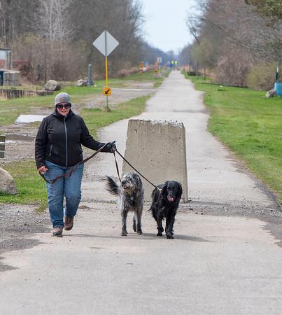200414 Enterprise 2<br /> James Neiss/staff photographer <br /> Pendleton, NY - Karen Papiernik enjoys the day walking her dogs Casey and Ziba on the Pendleton trails.