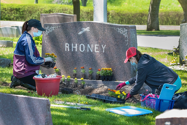 200520 Enterprise D<br /> James Neiss/staff photographer <br /> Lewiston, NY - Rhoney sisters, Teresa LaNasa of Cambria and Kate Fending of Lewiston, plant flowers at the family plot at the Gate Of Heaven Cemetery in preparation for Memorial Day, a yearly tradition for many families.