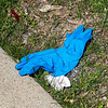 200406 Virus Waste Enterprise 3<br /> James Neiss/staff photographer <br /> Niagara Falls, NY - It's easy to find improperly discarded protective medical gear around area shopping centers like the Walmart Plaza parking areas in Niagara Falls.