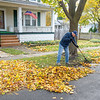 201102 Enterprise<br /> James Neiss/staff photographer <br /> Lockport, NY - John Moran took advantage of the morning sunshine to rake the leaves at his Harrison Avenue home. Moran said he suspects this won't be the last time.