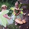 200815 Fairy House Festival 2