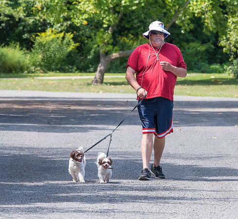 200825 Dog Day 2<br /> James Neiss/staff photographer <br /> Niagara Falls, NY - Alex and Max the dogs look like they are taking their master Jon Robins of Niagara Falls for a walk at DeVeaux Woods State Park. Wednesday is National Dog Day.