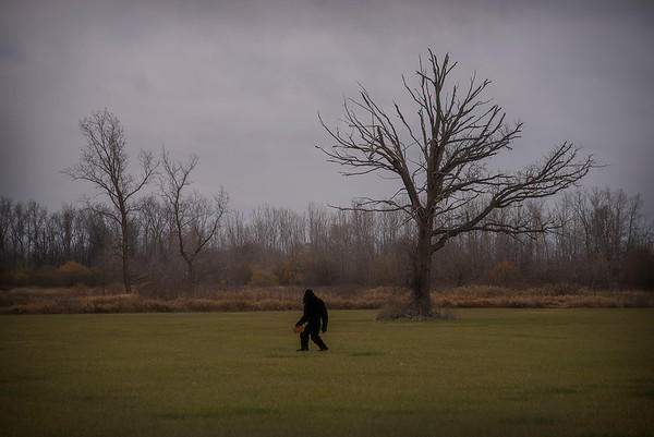 201113 Enterprise 1<br /> James Neiss/staff photographer <br /> Cambria, NY - Considering the individual spotted in a field alongside the road, perhaps Human Road in Cambria should be renamed Bigfoot Boulevard or Sasquatch Way.